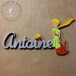 Plaque de porte Couleur du prénom Antoine : Parme